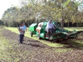 demo-pecan-nut-harvesting-equipment-harvester-04