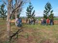 field-days-01-beaudesert-stuart-murrays-farm